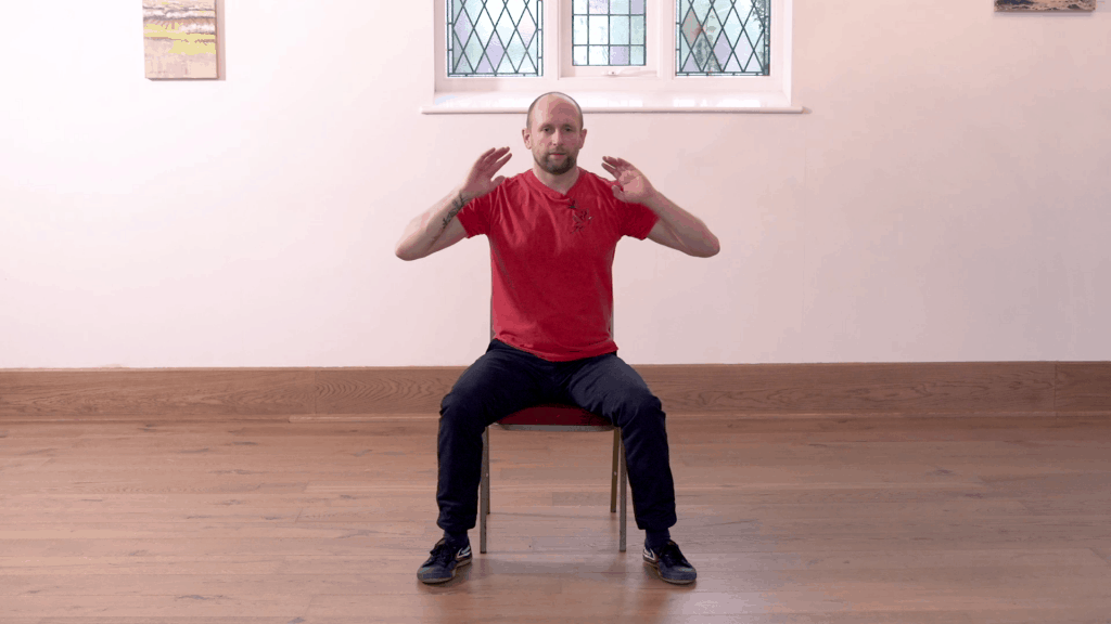 Qigong Chair Exercises